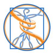 Grafische Darstellung der Logo der Philosophie der Physiotherapie Praxis mensana•med in Köln